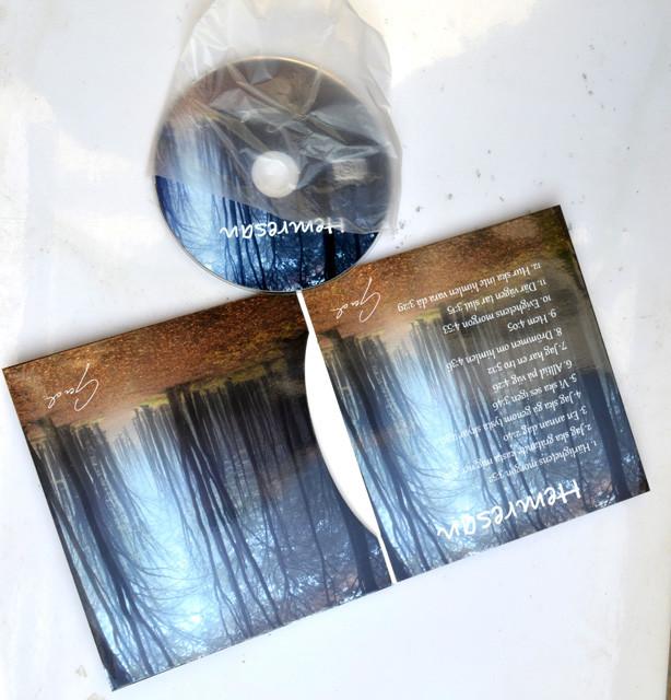 4 panel cd cardboard wallet